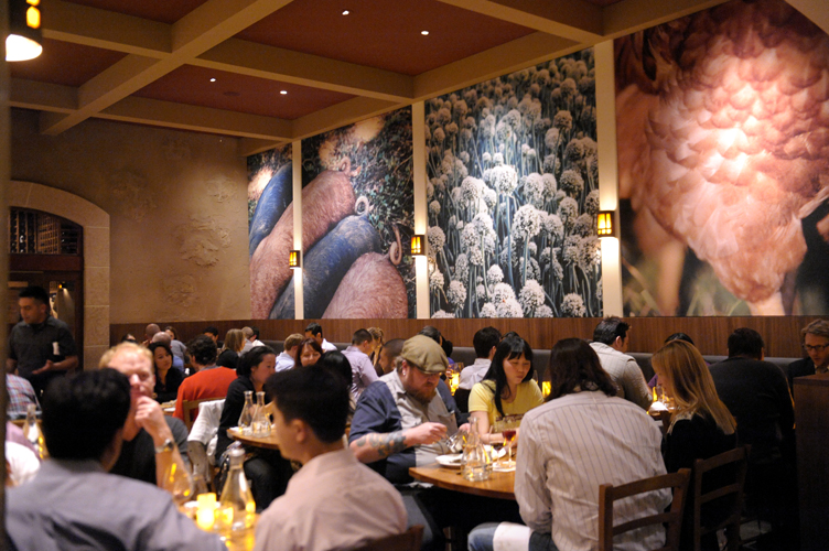 Restaurants - Wall Covering Designs, Inc.